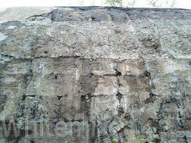 Коррозия бетона 1 го вида коррозия выщелачивания что такое реологические свойства бетонной смеси